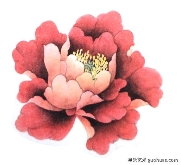 牡丹白描中国画的技法