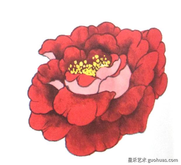 牡丹白描国画花的画法
