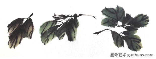 国画牡丹怎么画之牡丹老叶写意画法