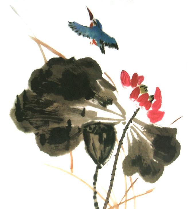 荷花花瓣的画法-3