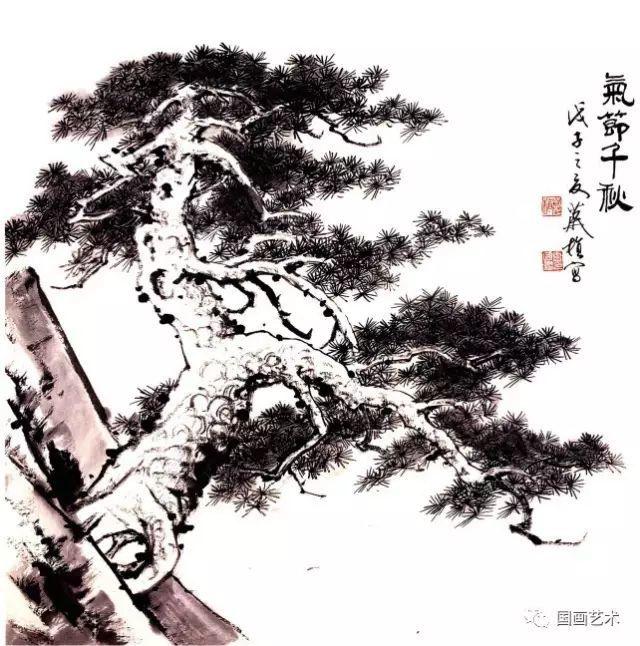 松树的画法-13