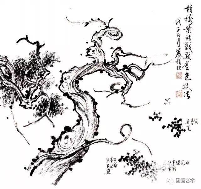 松树的画法-18
