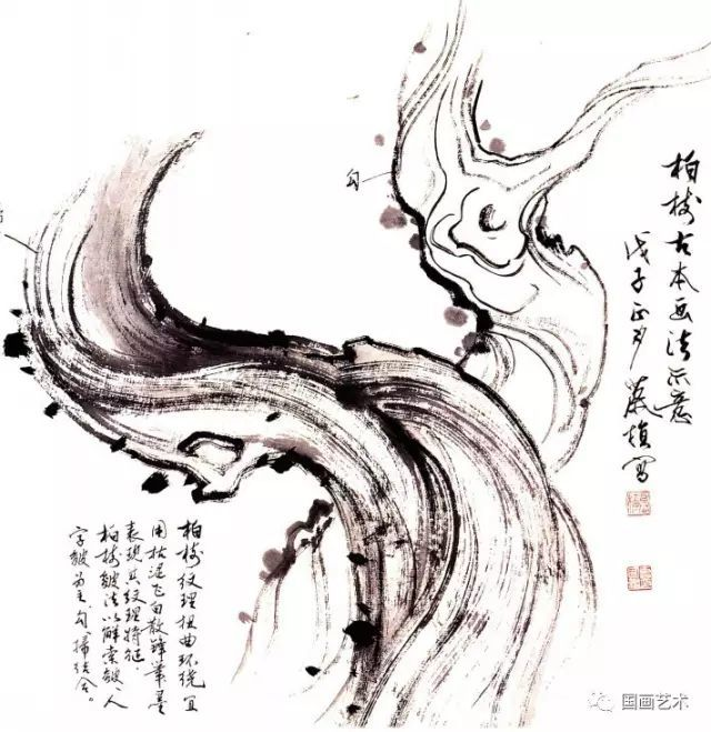 松树的画法-16