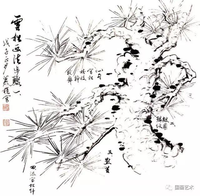 松树的画法-9