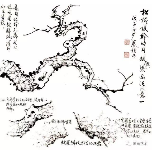 松树的画法-1