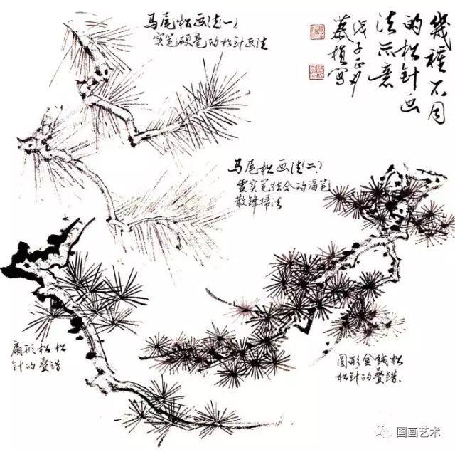 松树的画法-7