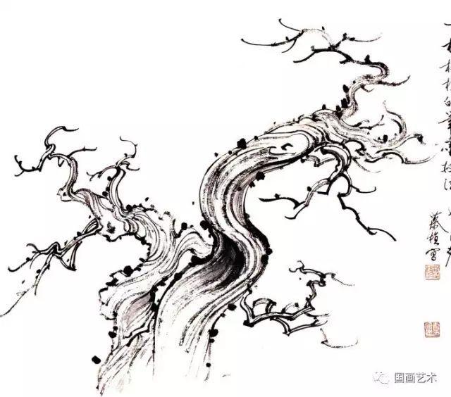 松树的画法-17