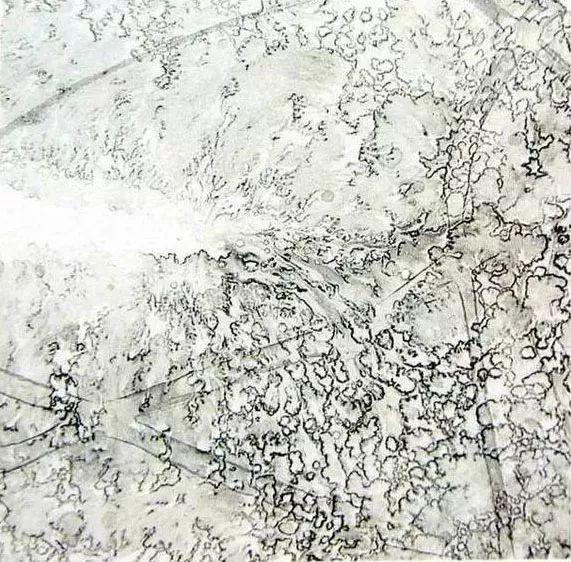 中国画技法之弹粉法湿画法2