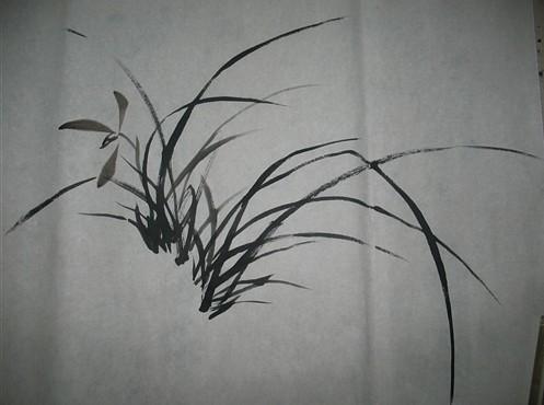 国画入门兰花的画法3