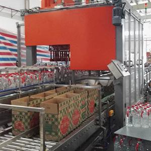 平移式全自动装箱机系列