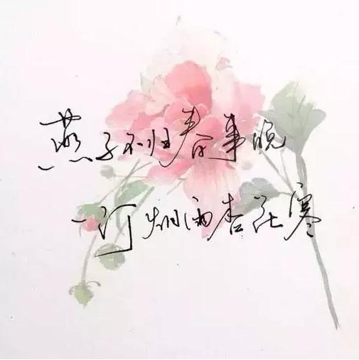 女生写字好看的技巧有哪些?有适合女生的字帖吗?
