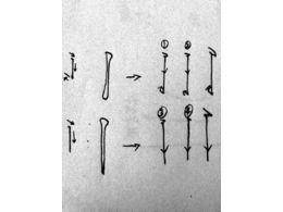 硬笔基本笔画——竖的写法