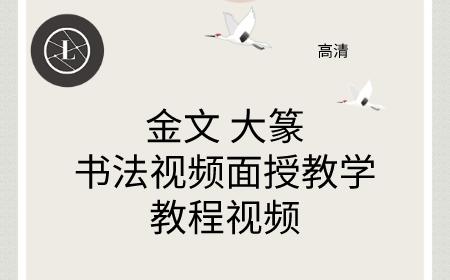 金文大篆书法视频面授教学教程视频