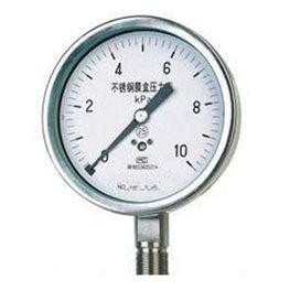 YE-B不锈钢膜盒压力表
