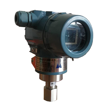 WT2000TG防爆型直接安装式压力变送器