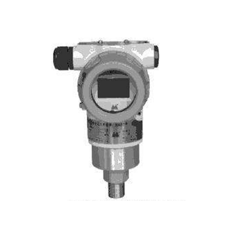 WT3000TG4S22A1B00CdM3智能直装防爆压力变送器