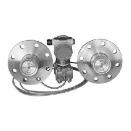 WT3000RD型智能双法兰液位变送器