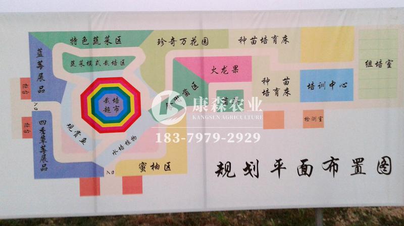 吉安青原区富滩农业连栋温室大棚