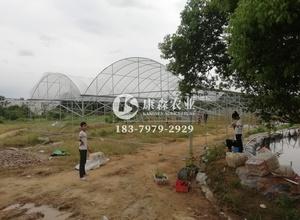 赣州沙石葡萄棚