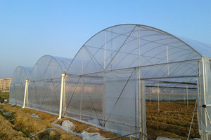 薄膜连栋温室大棚