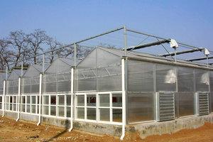 智能控温温室大棚定制建造