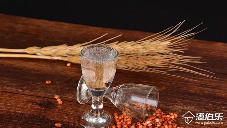酒伯乐:酱香型白酒的特点有哪些,你真的了解酱香型酒吗?