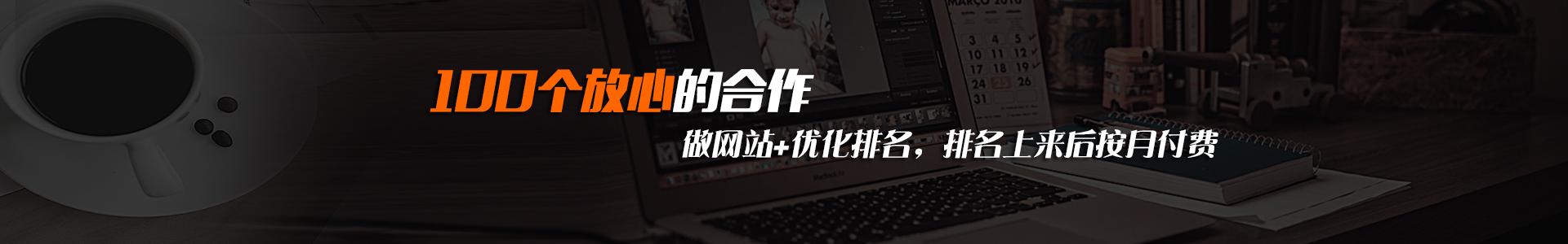 上海网站建设专注企业网站建设,SEO优化服务