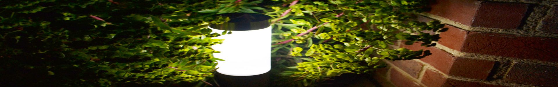 brightest solar walkway lights