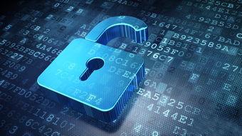 WMS系统和进销存管理软件的区别分析