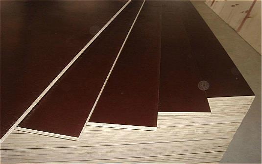 Brown Film Plywood Manufacturer