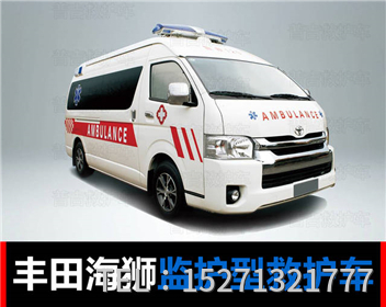 丰田海狮救护车 (3)