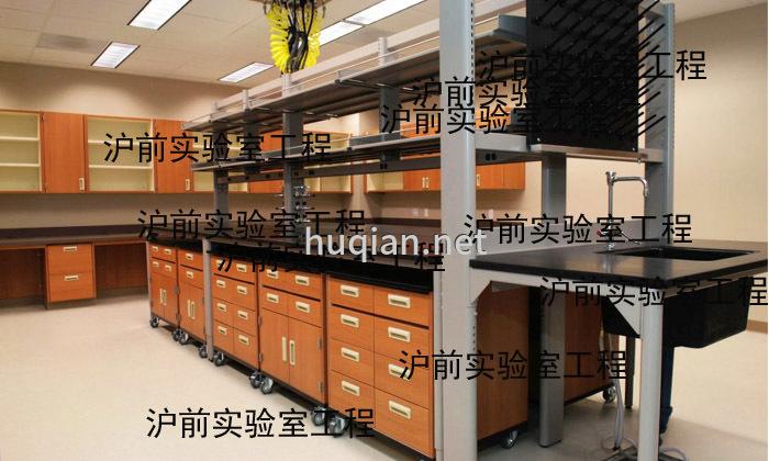 沪前不仅能设计全钢木通风柜还可以设计钢木实验台
