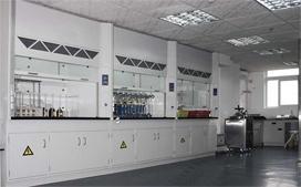 上海沪前玻璃钢通风柜供应商生产的孝感化验室通风橱