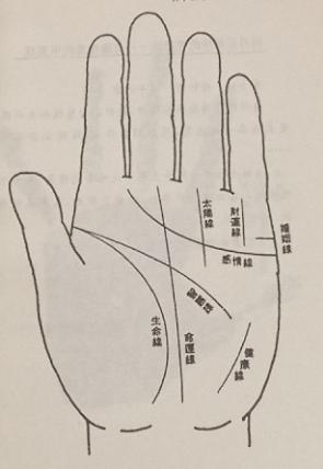 手相:看手相必看的八条线