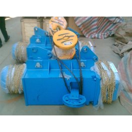 Electric Wire Rope Hoist For S ...