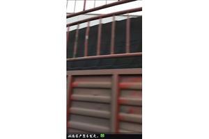 恒泰瓦业重庆树脂瓦整车发往湖南客户