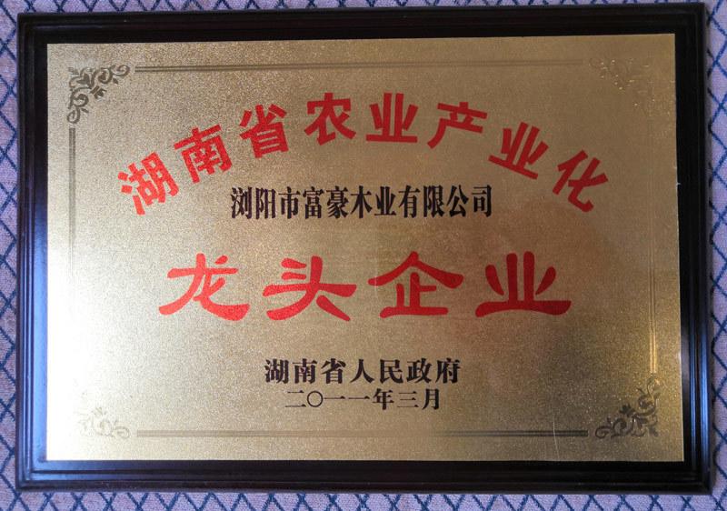 富豪楼梯荣获省林业产业龙头企业