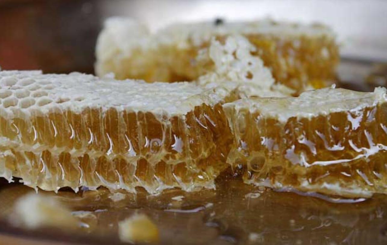 土蜂蜜生产过程