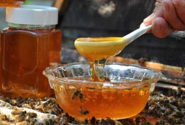 正宗土蜂蜜一般多少钱一斤