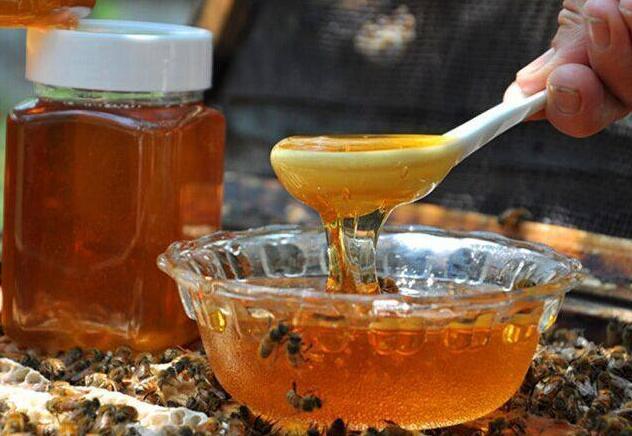 土蜜蜂高效养殖技术