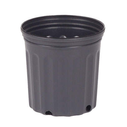 Suppliers Of Bulk Plastic Pots For Plants