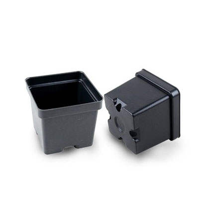 Cheap Small Pots For Succulents In Bulk Ireland