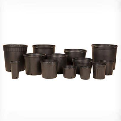 Black Plastic Nursery Pots Wholesale Supplier