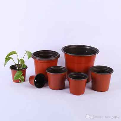 6 Inch Plastic Nursery Pots Wholesale Supplier