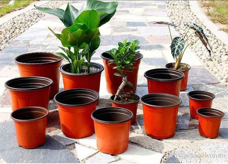 Cheap Plastic Seedling Pots Wholesale Supplier