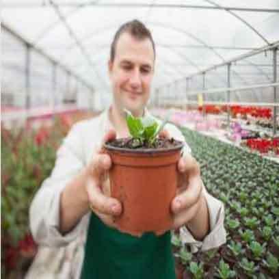 Large Greenhouse Nursery Pots Wholesale