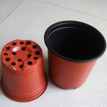 Bulk Buy Cheap Nursery Plant Containers