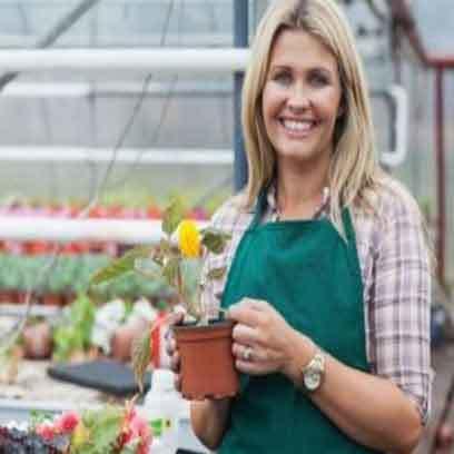 Cheap Plastic v9 Nursery Pots Wholesale Supplier