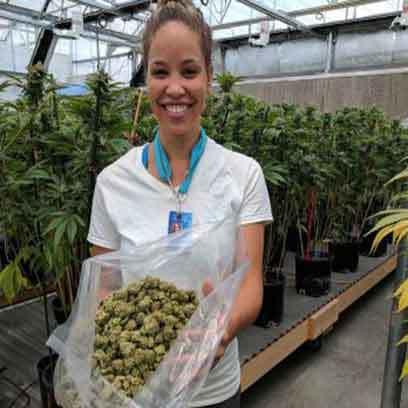 Cheap 8 Inch Plastic Plant Pots Wholesale Suppliers UK