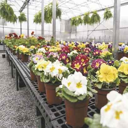 Cheap Large Plastic Flower Pots Wholesale Canada